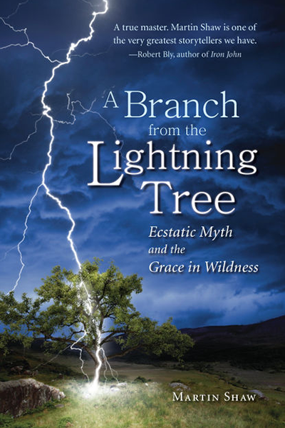 A Branch From the Lightning Tree book cover