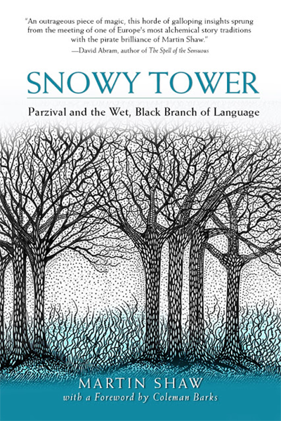 Snowy Tower book cover